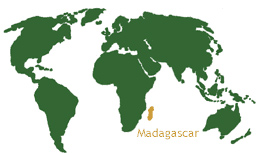 madagascar-world-map
