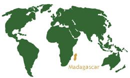 madagascar-world-map